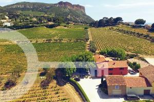 Domaine du Bagnol Vin Cassis