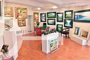 Galerie Les Antiques St Rémy de Provence